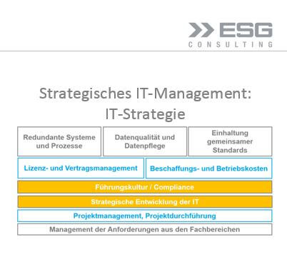 IT-Strategie, Factsheet